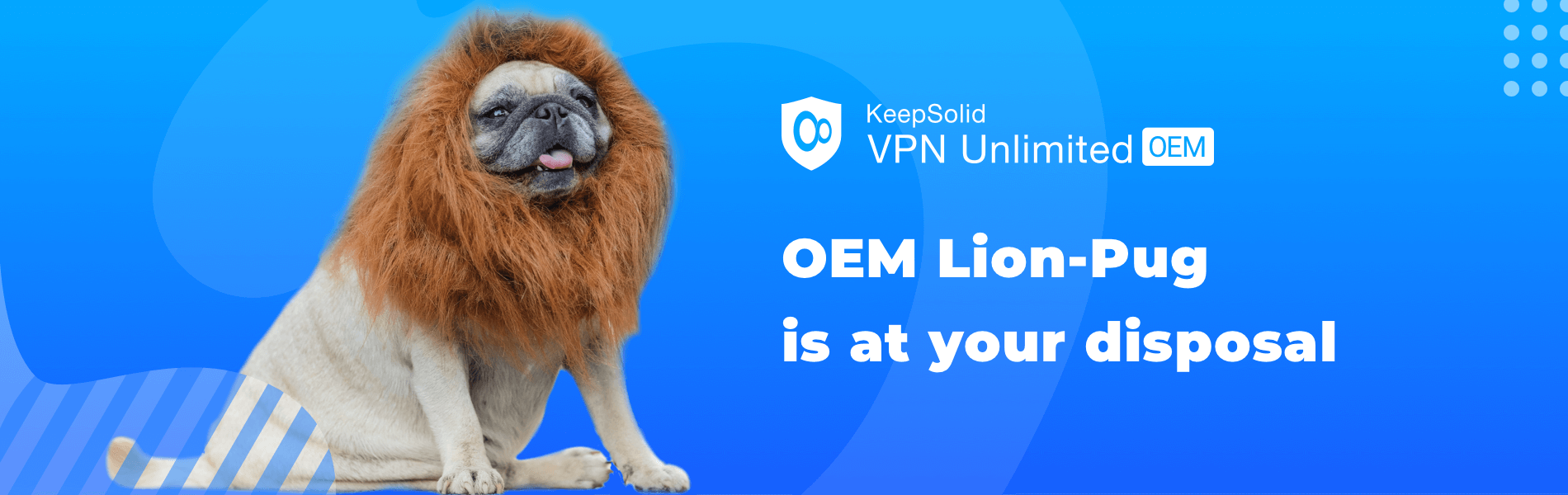 Funny face of OEM pug dog with lion costume.